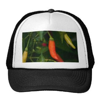 Too Hot To Handle Trucker Hats