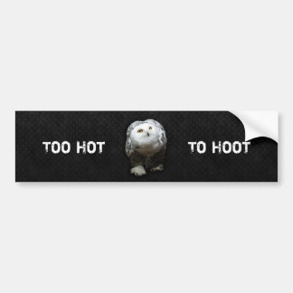 Too Hot To Hoot Bumper Sticker