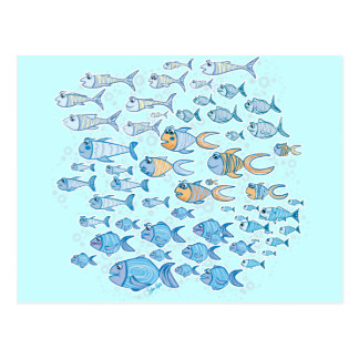 Too Much Fish Post Card