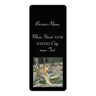 toony tiger 10 cm x 24 cm invitation card