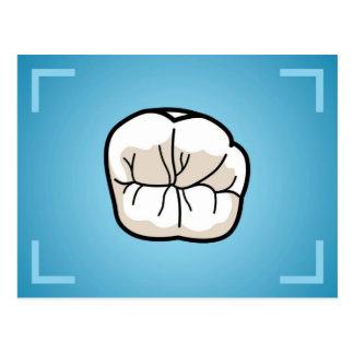 Tooth Post-Card Postcard