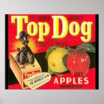 Top Dog Apple Advertisement 16 x 20 Poster