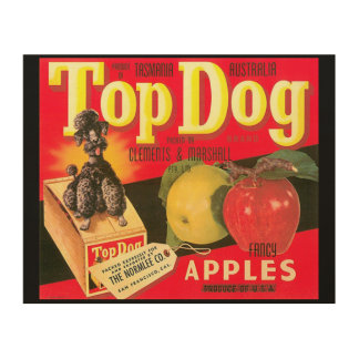 Top Dog Apples Wood Print