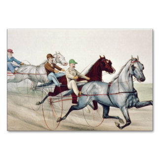 TOP Harness Racing Table Cards