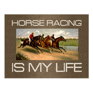 TOP Horse Racing Is My Life Postcard