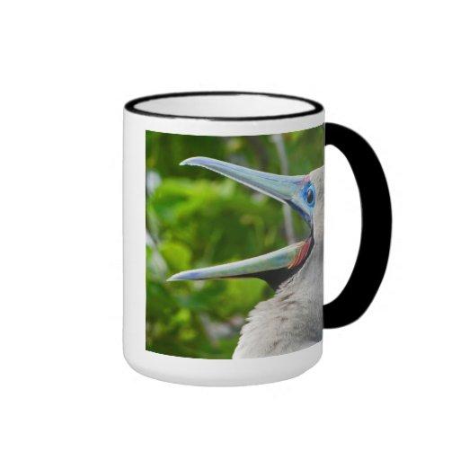 Top 'O the Morning Booby Mug