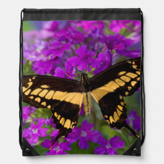 Top of a swallowtail butterfly drawstring bag