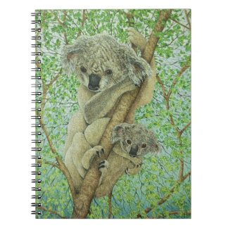 Top of the tree notebook