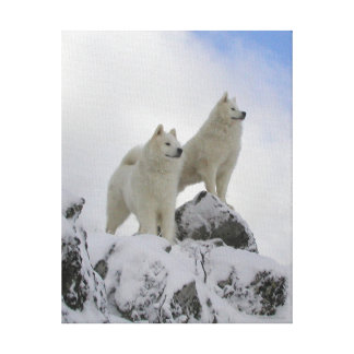 """""""Top Of The World"""" Canvas Wall Art"""