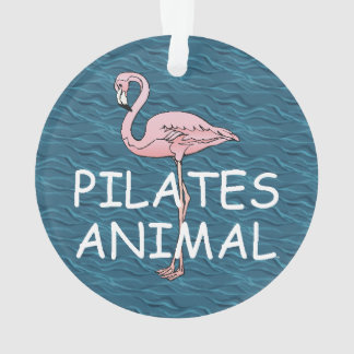 TOP Pilates Animal
