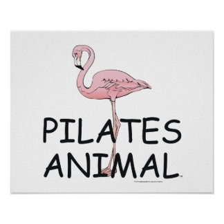 TOP Pilates Animal Poster