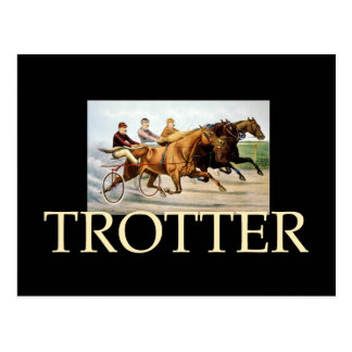 TOP Trotter Postcard