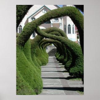 Topiary Arches at Zarcero, Costa Rica Poster