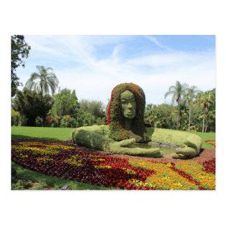 Topiary Art Postcard