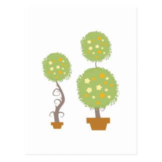 Topiary Postcard