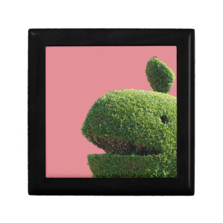 Topiary Whale Gift Box
