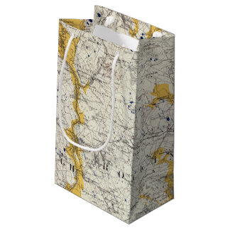 Topographic and Glacial Map of New Hampshire Small Gift Bag