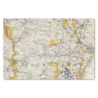 Topographic and Glacial Map of New Hampshire Tissue Paper