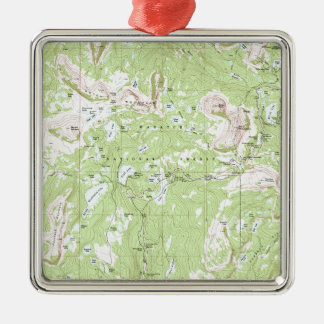 Topographic Map Silver-Colored Square Decoration