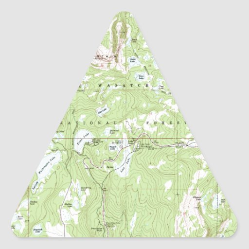 Topographic Map Triangle Stickers