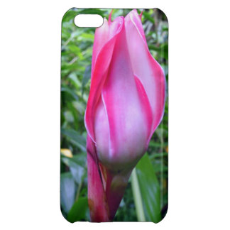 Torch Ginger Cover For iPhone 5C