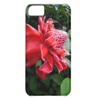 Torch Ginger iPhone 5C Case