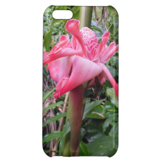 Torch Ginger iPhone 5C Covers