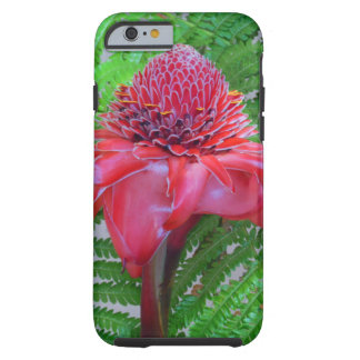 Torch Ginger Tough iPhone 6 Case