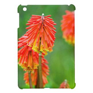 Torch Lily (Kniphofia Uvaria), Western Cape iPad Mini Cover