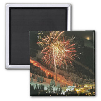 Torchlight parade and fireworks during Winter Magnet