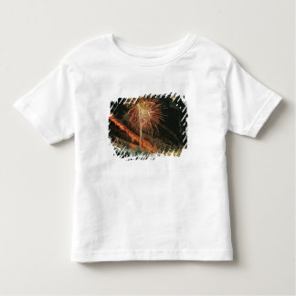 Torchlight parade and fireworks during Winter Toddler T-Shirt