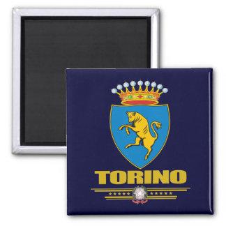 Torino (Turin) Magnet