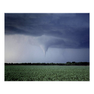 Tornado Warning Poster