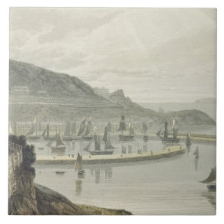 Torquay, Devon, from Volume VIII of 'A Voyage Arou Tile