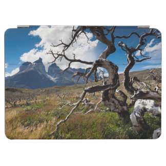 Torres del Paine National Park, fire damaged trees iPad Air Cover