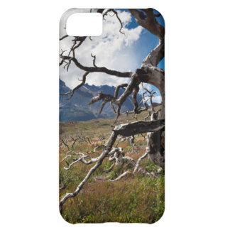 Torres del Paine National Park, fire damaged trees iPhone 5C Case