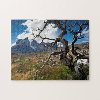 Torres del Paine National Park, fire damaged trees Jigsaw Puzzle
