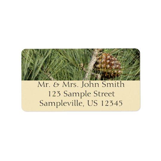 Torrey Pine Closeup California Tree Address Label