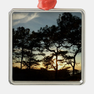 Torrey Pine Sunset II California Landscape Christmas Ornament