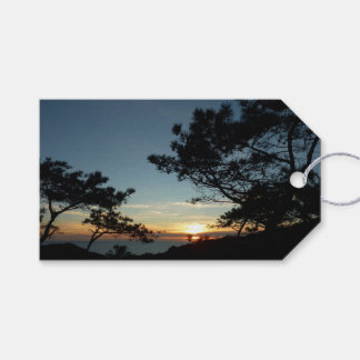 Torrey Pine Sunset III California Landscape Gift Tags