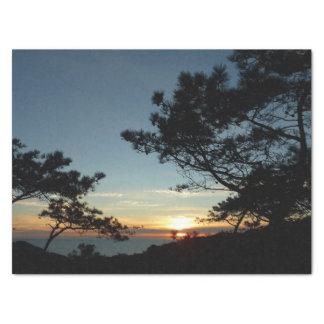 Torrey Pine Sunset III California Landscape Tissue Paper