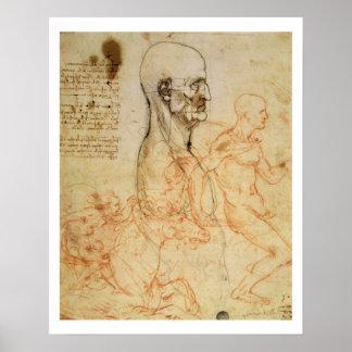 Torso of a Man in Profile, the Head Squared for Pr Poster