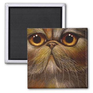 TORTI PERSIAN CAT Magnet