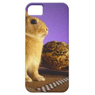 Tortoise and the hare iPhone 5 case