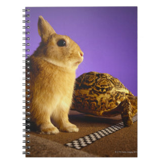 Tortoise and the hare notebook