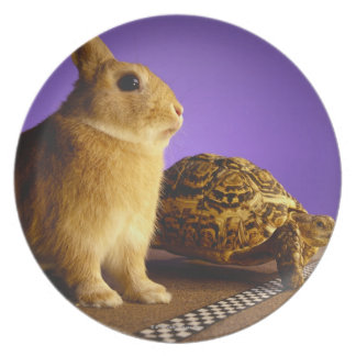 Tortoise and the hare party plate