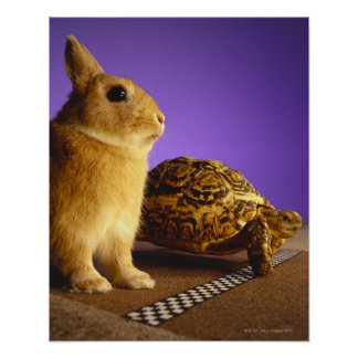 Tortoise and the hare poster