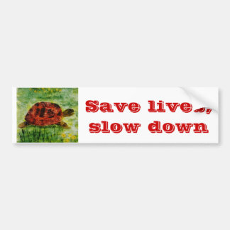 Tortoise Animal Art Slow Down Bumper Sticker