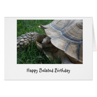 Tortoise Belated Birthday Card