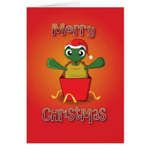 tortoise - box - merry christmas greeting cards
